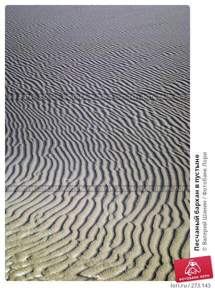 Песчаный бархан в пустыне, фото № 273143, снято 28 ноября 2007 г. (c) Валерий Шанин / Фотобанк Лори