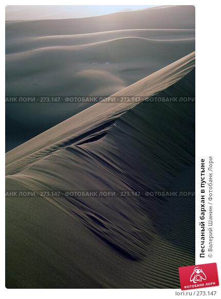 Песчаный бархан в пустыне, фото № 273147, снято 28 ноября 2007 г. (c) Валерий Шанин / Фотобанк Лори