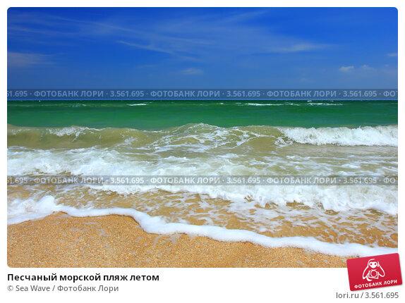 Купить «Песчаный морской пляж летом», фото № 3561695, снято 28 мая 2012 г. (c) Sea Wave / Фотобанк Лори