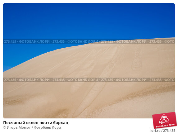 Песчаный склон почти бархан, фото № 273435, снято 4 мая 2008 г. (c) Игорь Момот / Фотобанк Лори
