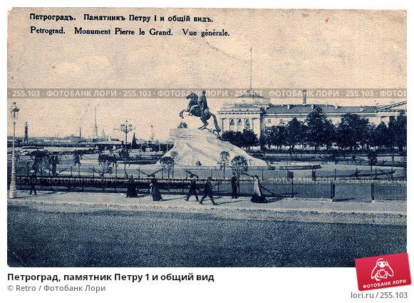 Петроград, памятник Петру 1 и общий вид, фото № 255103, снято 25 мая 2017 г. (c) Retro / Фотобанк Лори