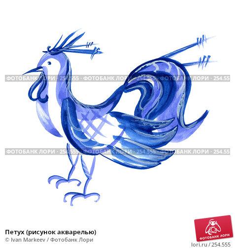 Петух (рисунок акварелью), иллюстрация № 254555 (c) Василий Каргандюм / Фотобанк Лори