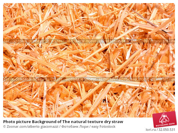 Photo picture Background of The natural texture dry straw. Стоковое фото, фотограф Zoonar.com/alberto giacomazzi / easy Fotostock / Фотобанк Лори
