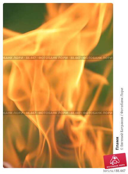 Пламя, фото № 88447, снято 12 августа 2007 г. (c) Евгений Батраков / Фотобанк Лори