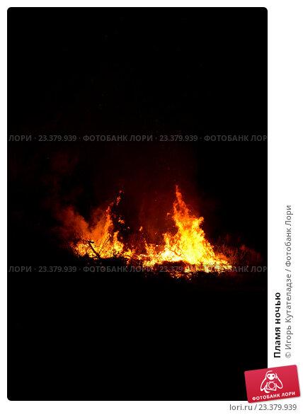 Купить «Пламя ночью», фото № 23379939, снято 29 июля 2016 г. (c) Игорь Кутателадзе / Фотобанк Лори