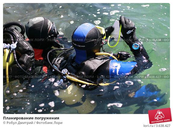 Купить «Планирование погружения», фото № 3638427, снято 30 апреля 2012 г. (c) Робул Дмитрий / Фотобанк Лори