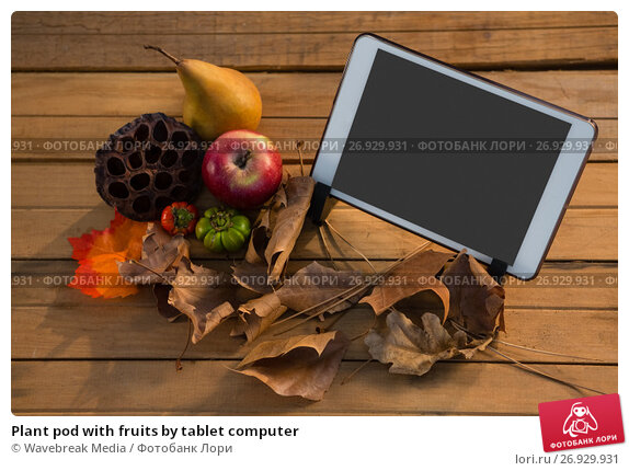 Plant pod with fruits by tablet computer, фото № 26929931, снято 11 апреля 2017 г. (c) Wavebreak Media / Фотобанк Лори
