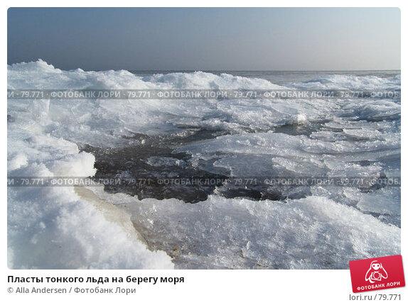 Пласты тонкого льда на берегу моря, фото № 79771, снято 13 февраля 2006 г. (c) Alla Andersen / Фотобанк Лори