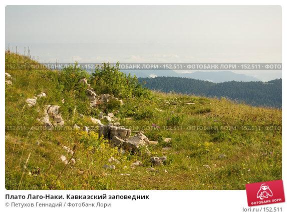 Плато Лаго-Наки. Кавказский заповедник, фото № 152511, снято 10 августа 2007 г. (c) Петухов Геннадий / Фотобанк Лори