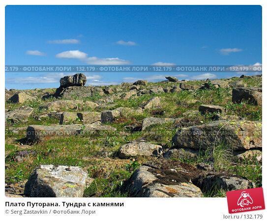 Плато Путорана. Тундра с камнями, фото № 132179, снято 23 июля 2004 г. (c) Serg Zastavkin / Фотобанк Лори