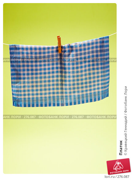 Купить «Платок», фото № 276087, снято 31 октября 2005 г. (c) Кравецкий Геннадий / Фотобанк Лори