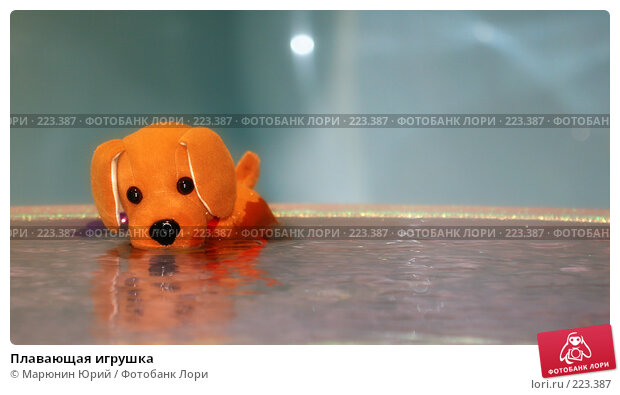 Плавающая игрушка, фото № 223387, снято 12 марта 2008 г. (c) Марюнин Юрий / Фотобанк Лори