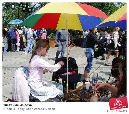 Плетение из лозы, фото № 240615, снято 24 августа 2017 г. (c) Галина  Горбунова / Фотобанк Лори