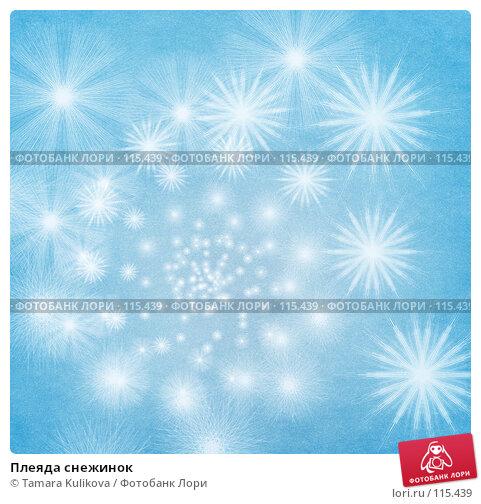 Купить «Плеяда снежинок», иллюстрация № 115439 (c) Tamara Kulikova / Фотобанк Лори