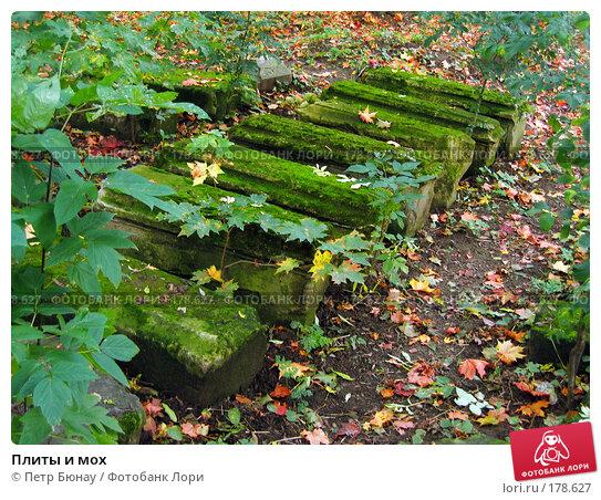 Плиты и мох, фото № 178627, снято 27 сентября 2003 г. (c) Петр Бюнау / Фотобанк Лори