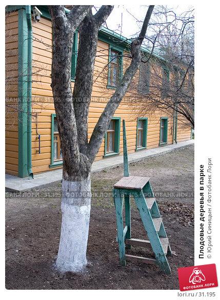 Плодовые деревья в парке, фото № 31195, снято 3 апреля 2007 г. (c) Юрий Синицын / Фотобанк Лори