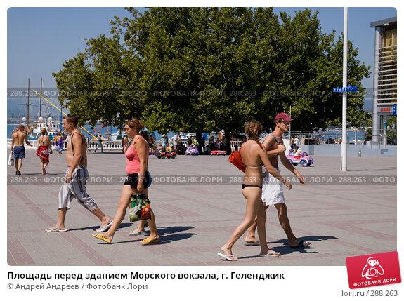 Площадь перед зданием Морского вокзала, г. Геленджик, фото № 288263, снято 26 августа 2007 г. (c) Андрей Андреев / Фотобанк Лори