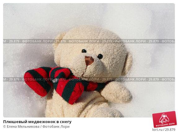 Плюшевый медвежонок в снегу, фото № 29879, снято 28 марта 2007 г. (c) Елена Мельникова / Фотобанк Лори
