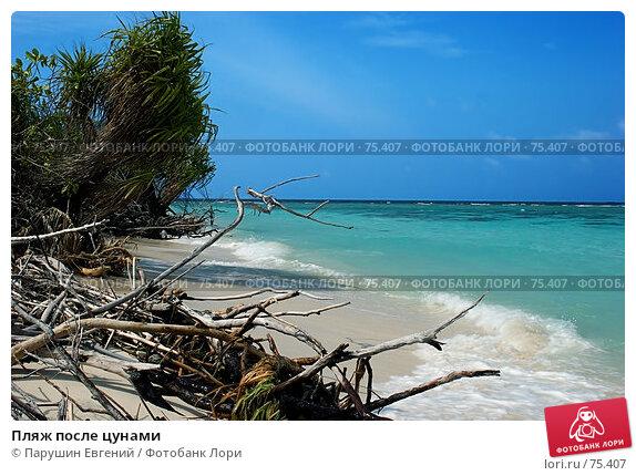 Купить «Пляж после цунами», фото № 75407, снято 22 апреля 2018 г. (c) Парушин Евгений / Фотобанк Лори