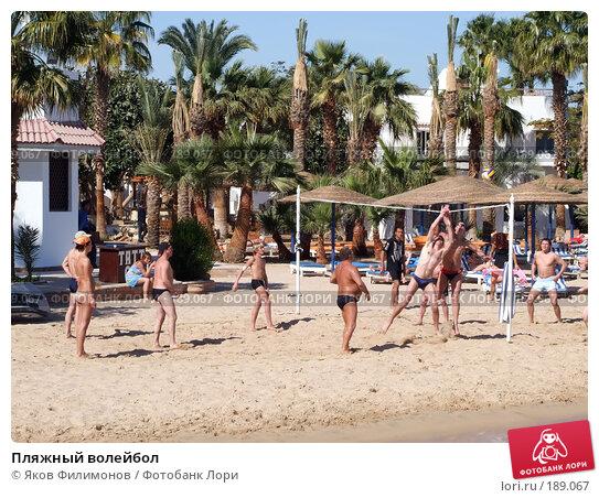 Пляжный волейбол, эксклюзивное фото № 189067, снято 16 января 2008 г. (c) Яков Филимонов / Фотобанк Лори