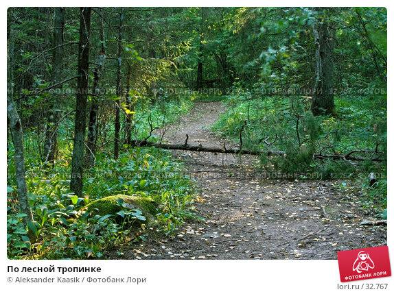 По лесной тропинке, фото № 32767, снято 29 апреля 2017 г. (c) Aleksander Kaasik / Фотобанк Лори