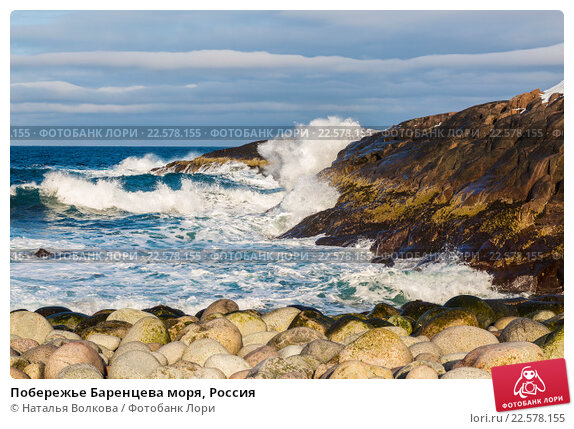 Побережье Баренцева моря, Россия, фото № 22578155, снято 11 марта 2016 г. (c) Наталья Волкова / Фотобанк Лори
