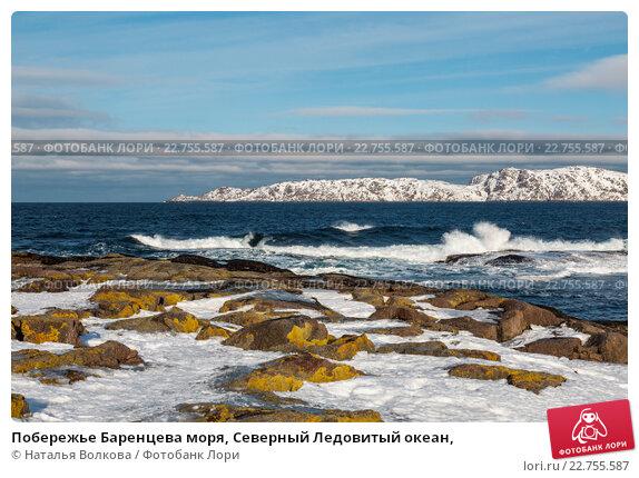 Побережье Баренцева моря, Северный Ледовитый океан,, фото № 22755587, снято 11 марта 2016 г. (c) Наталья Волкова / Фотобанк Лори
