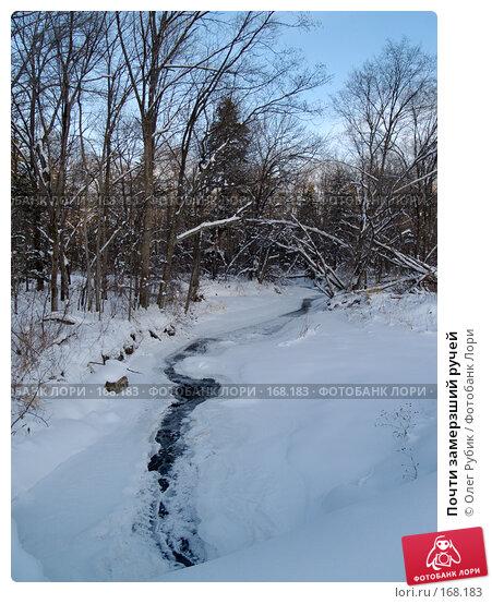 Почти замерзший ручей, фото № 168183, снято 5 января 2008 г. (c) Олег Рубик / Фотобанк Лори
