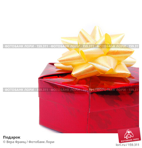Подарок, фото № 159311, снято 24 декабря 2007 г. (c) Вера Франц / Фотобанк Лори