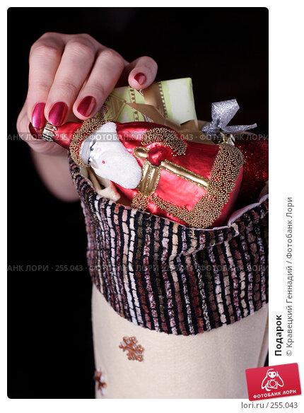 Подарок, фото № 255043, снято 20 ноября 2004 г. (c) Кравецкий Геннадий / Фотобанк Лори