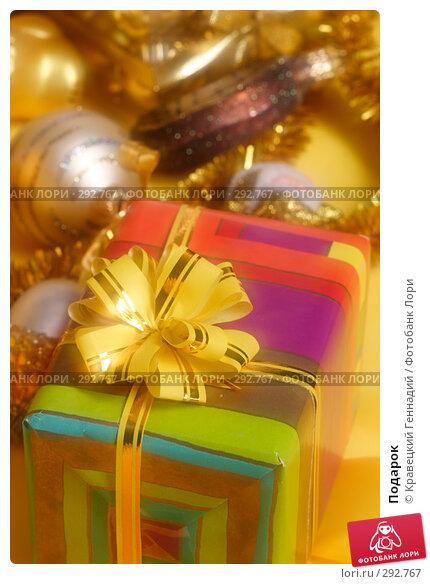 Купить «Подарок», фото № 292767, снято 15 ноября 2004 г. (c) Кравецкий Геннадий / Фотобанк Лори
