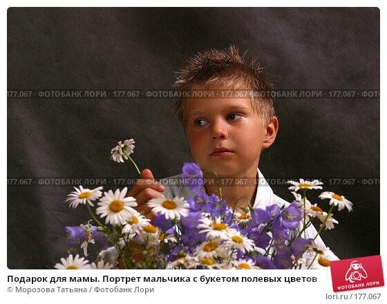 Купить «Подарок для мамы. Портрет мальчика с букетом полевых цветов», фото № 177067, снято 13 июля 2004 г. (c) Морозова Татьяна / Фотобанк Лори