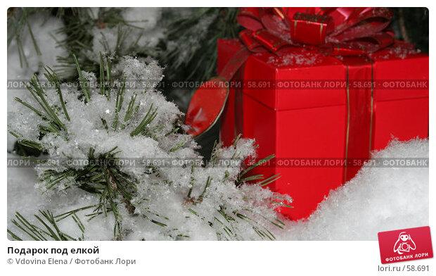 Подарок под елкой, фото № 58691, снято 30 ноября 2006 г. (c) Vdovina Elena / Фотобанк Лори