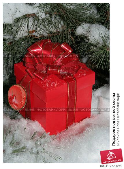 Подарок под веткой сосны, фото № 58695, снято 30 ноября 2006 г. (c) Vdovina Elena / Фотобанк Лори