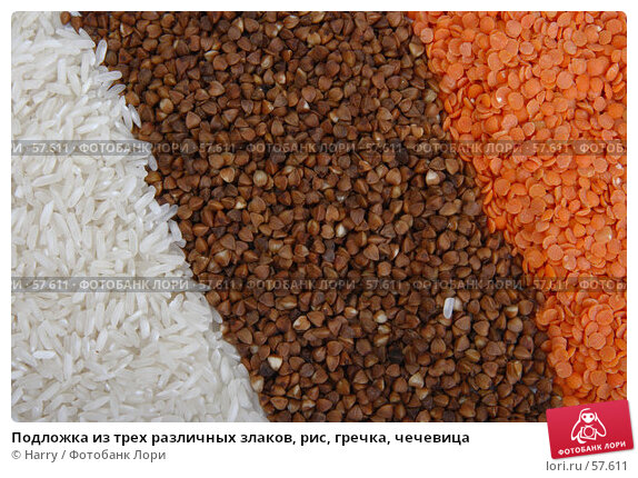 Подложка из трех различных злаков, рис, гречка, чечевица, фото № 57611, снято 26 мая 2006 г. (c) Harry / Фотобанк Лори
