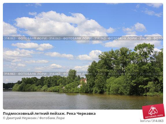 Подмосковный летний пейзаж. Река Чернавка, эксклюзивное фото № 314063, снято 2 июня 2008 г. (c) Дмитрий Нейман / Фотобанк Лори