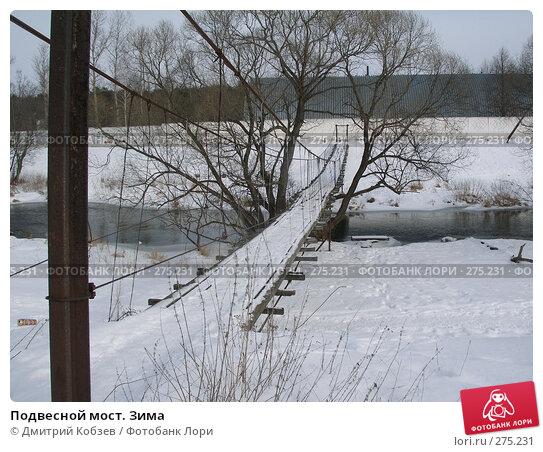 Подвесной мост. Зима, фото № 275231, снято 17 февраля 2008 г. (c) Дмитрий Кобзев / Фотобанк Лори