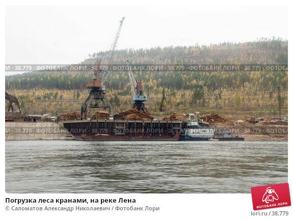 Погрузка леса кранами, на реке Лена, фото № 38779, снято 20 сентября 2006 г. (c) Саломатов Александр Николаевич / Фотобанк Лори