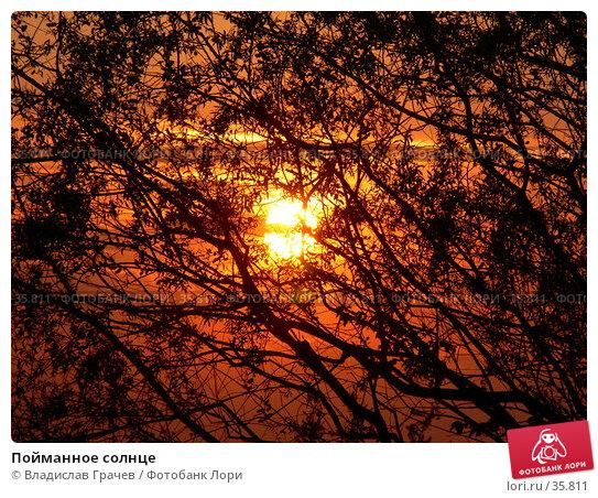 Пойманное солнце, фото № 35811, снято 14 мая 2006 г. (c) Владислав Грачев / Фотобанк Лори