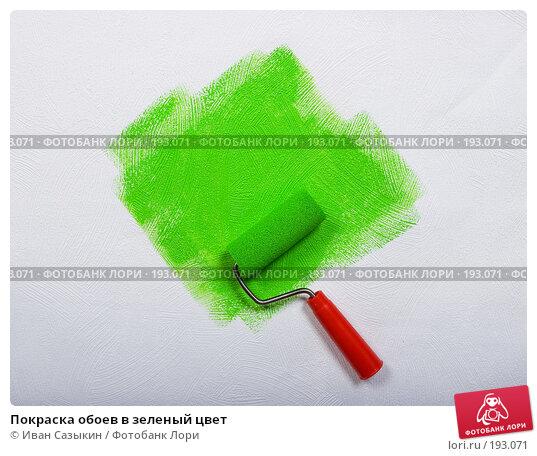 Покраска обоев в зеленый цвет, фото № 193071, снято 31 января 2008 г. (c) Иван Сазыкин / Фотобанк Лори