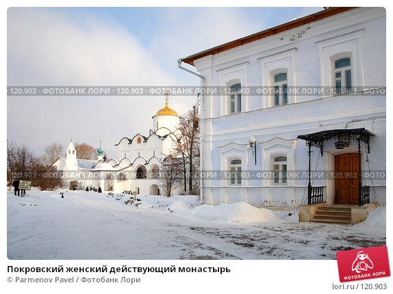 Покровский женский действующий монастырь, фото № 120903, снято 18 ноября 2007 г. (c) Parmenov Pavel / Фотобанк Лори