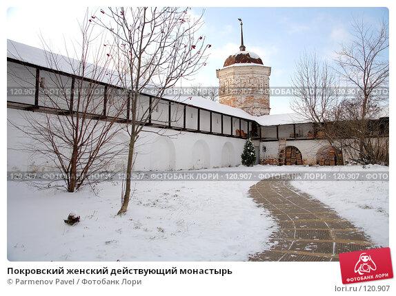 Покровский женский действующий монастырь, фото № 120907, снято 18 ноября 2007 г. (c) Parmenov Pavel / Фотобанк Лори