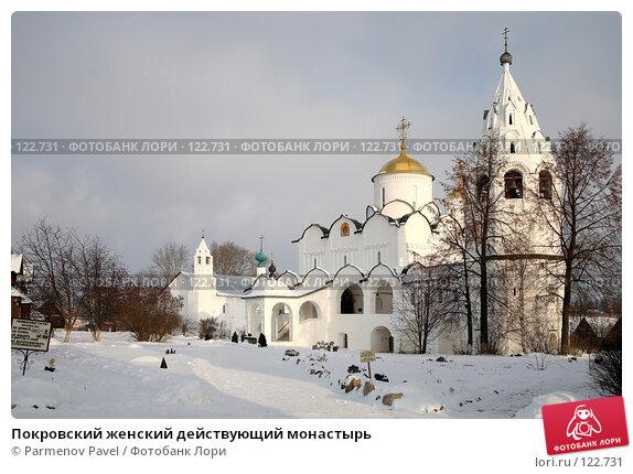 Купить «Покровский женский действующий монастырь», фото № 122731, снято 18 ноября 2007 г. (c) Parmenov Pavel / Фотобанк Лори