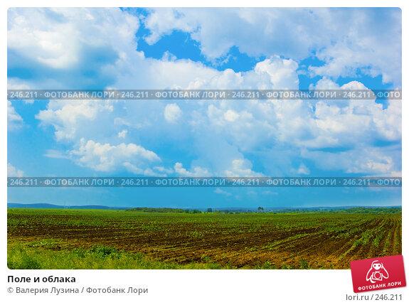 Поле и облака, фото № 246211, снято 30 июня 2007 г. (c) Валерия Потапова / Фотобанк Лори