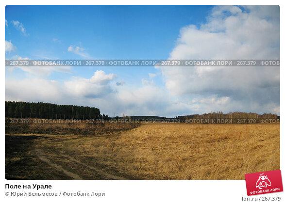 Поле на Урале, фото № 267379, снято 27 апреля 2008 г. (c) Юрий Бельмесов / Фотобанк Лори