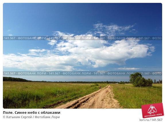 Поле. Синее небо с облаками, фото № 141567, снято 24 июня 2007 г. (c) Катыкин Сергей / Фотобанк Лори