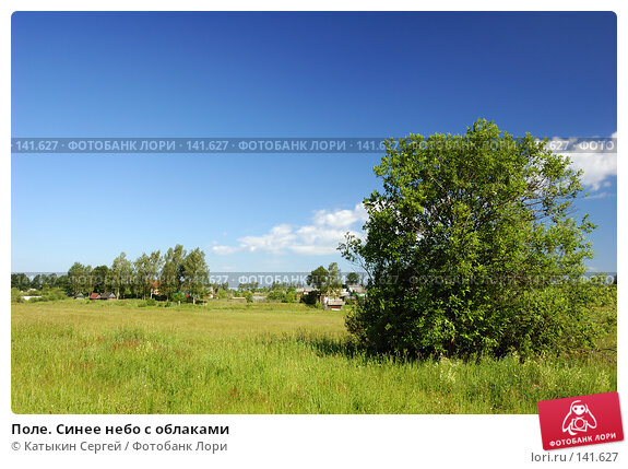 Поле. Синее небо с облаками, фото № 141627, снято 24 июня 2007 г. (c) Катыкин Сергей / Фотобанк Лори