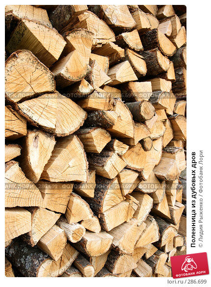 Поленница из дубовых дров, фото № 286699, снято 1 мая 2008 г. (c) Лидия Рыженко / Фотобанк Лори