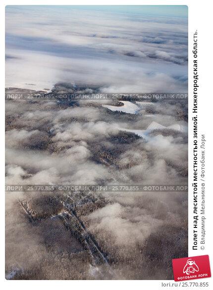 Полет над лесистой местностью зимой. Нижегородская область., фото № 25770855, снято 3 февраля 2017 г. (c) Владимир Мельников / Фотобанк Лори