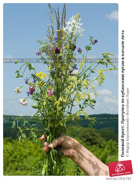 Полевой букет. Прогулка по кубанским лугам в начале лета, фото № 313731, снято 4 июня 2008 г. (c) Федор Королевский / Фотобанк Лори